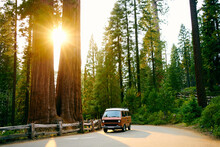 Camper Van California Road Trip