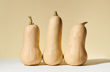 Three Butternut Squash In Still Life