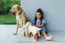 Girl With Her Dog Labrador And Her Puppies