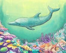 Dolphin Watercolor Illustration