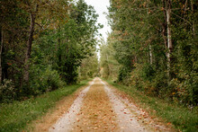 Rural Trail In Early Autumn
