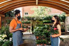 Coworkers Working In Plant Nursery Wearing Face Mask