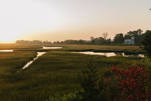 Beautiful Marsh Landscape With House