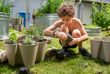 Young Boy Squats To Transplant Herbs Into Pot
