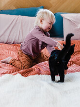 Toddler Reaching Out To Cat