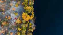 Aerial View Of A River Bank And Autumn Trees