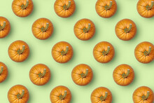 Horizontal Pattern From Fresh Natural Pumpkins.