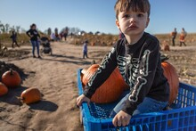 Worried At The Pumpkin Patch