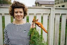 Female Farmer Harvesting Carrots In Garden