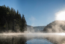 Mist Over Lake In Forest During Sunrise