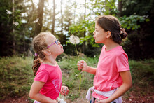 Two Young Girls Blowing A Big Dandelion Together