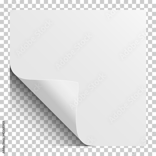 Carta da parati Sheet of white paper with curled corner and soft shadow