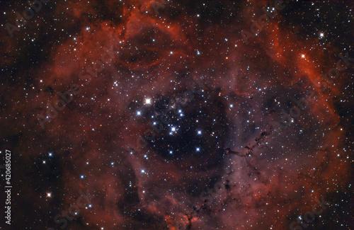 Vászonkép The Rosette nebula (Caldwell 49) an emission nebula near the constellation of Or