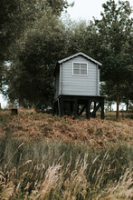 Small Blue Wooden Cabin In A Field With Trees