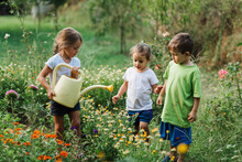 Little Gardeners Helping In The Garden