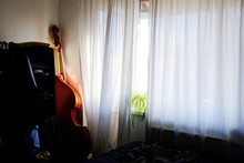Sunny Room With Double Bass