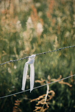 Barbed Wire With Ribbon
