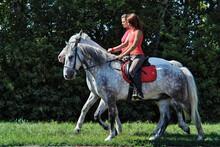 Pair Of Girls Walking On Horseback In Summer  Fields