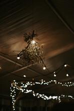Mistletoe And String Lights
