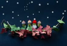 Acorn Santa With Acorn Family