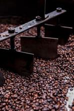 Organic Coffee Prepared At Farm In Costa Rica