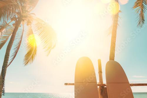 Fototapeta Surfboard and palm tree on beach background. obraz