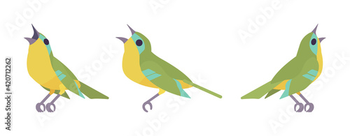 Fotografiet Songbird green and yellow set, beautiful singing little musical birds