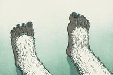 Yeti Feet Sitting On Snow In Winter