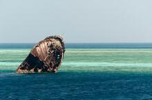 Ship Wreck In The Maldives.