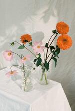 Bright Still Life Of Small Flowers