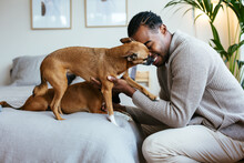 Happy Black Man Playing With Dogs On Bed