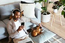 Relaxed African American Man Using Smartphone Near Dogs