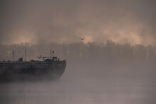 Empty Cargo Ships Covered With Fog In The Shipyard
