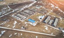 Big Farm With Cow Barns