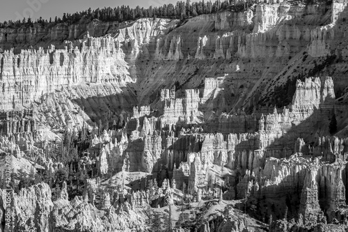 Canvas Print Bryce Canyon National Park landscape in black and white