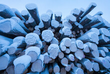 Timber Piles Covered In Snow