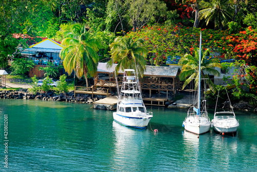 Foto cove in Caribbean with sailboats, fishing boats and palm trees