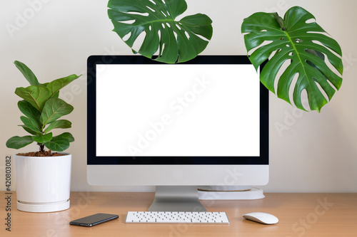 Obraz Blank screen of All in one Computer with Monstera and Fiddle Fig  on table - fototapety do salonu