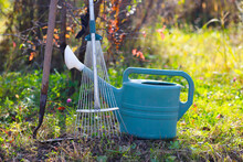 Metal Rakes, Plastic Watering Can And Garden Hoe On The Grass Under A Tree On A Sunny Autumn Day. Harvest Time.