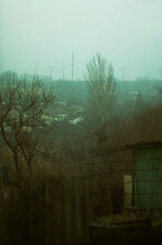 Houses In The Green Mist