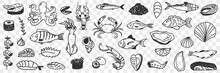 Seafood And Fish Doodle Set. Collection Of Hand Drawn Crab Shrimp Prawn Octopus Shells Caviar Squid Various Fish For Making Dishes And Sushi Isolated On Transparent Background
