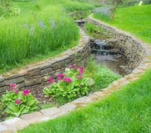 USA, Pennsylvania, Wayne And Chanticleer Gardens With Small Stream Primrose And Camas