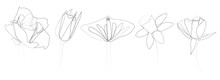 Continuous Line Drawing Of Beautiful Flowers