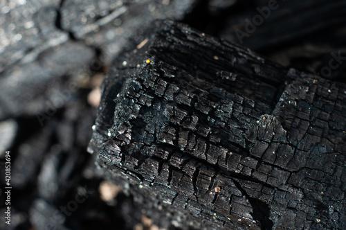 Wallpaper Mural Black charcoal close-up, macro photography