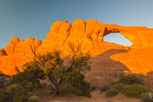 USA, Utah, Arches National Park. Landscape With Skyline Arch.