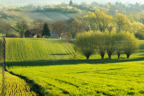 beautiful-spring-rural-landscape-with-green-fields