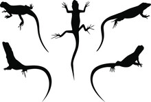 Set Of Lizards Black Silhouette Vector Illustration