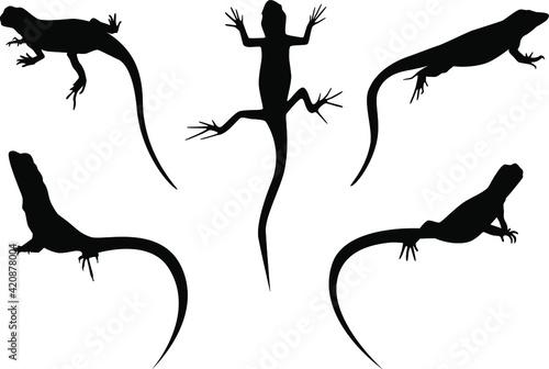Obraz na plátně set of lizards black silhouette vector illustration