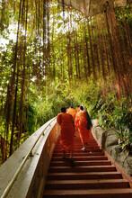 Buddhist Monks On Stairway, Wat Saket, Golden Mount, Bangkok, Thailand