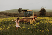 Young Woman Walking In Field Of Yellow Wildflowers By Abandoned Combine Harvester, Jalama, California, USA